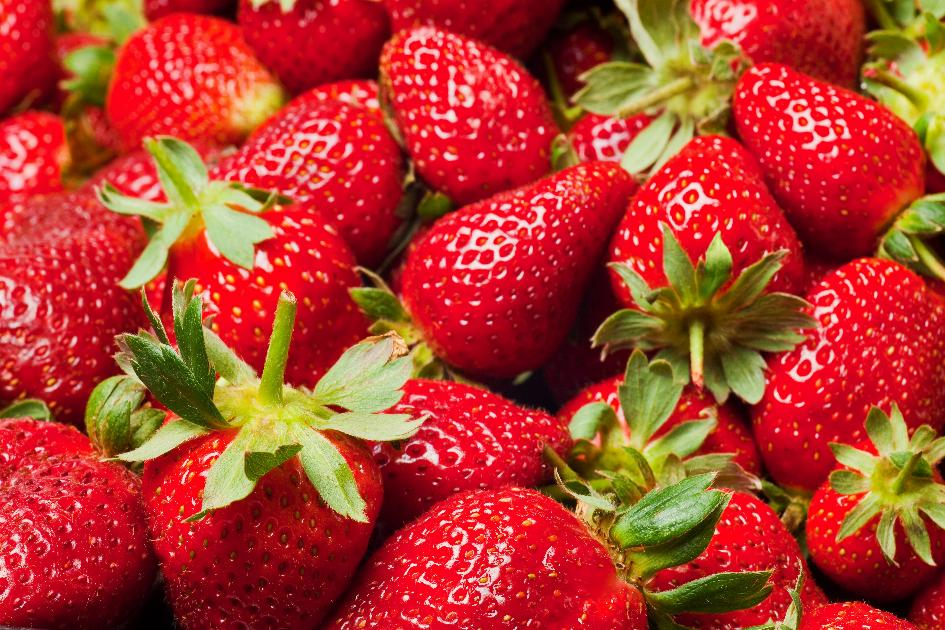 banner-1 of These Foods Can Help Keep Arthritis Minimized