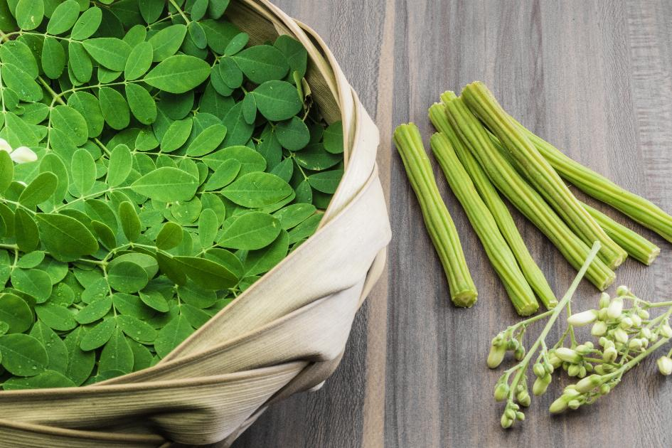 thumbnail of What is Moringa Oleifera and What Are the Health Benefits?